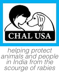 CHAL USA Logo